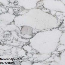 Đá Marble Arabescato MT-DM0003