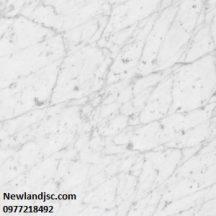 Đá Marble Bianco Goia MT-DM0020